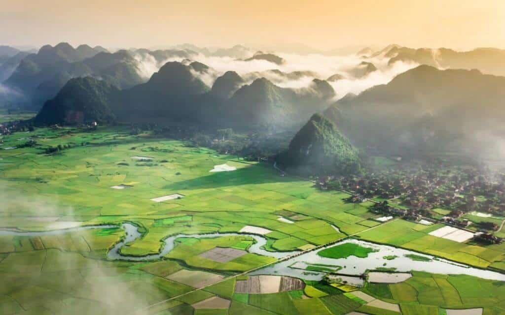 Vietnamese Vista