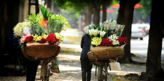 Tourist fall in love with Vietnam