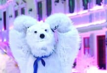 Polar Bear Saigon Snow Town