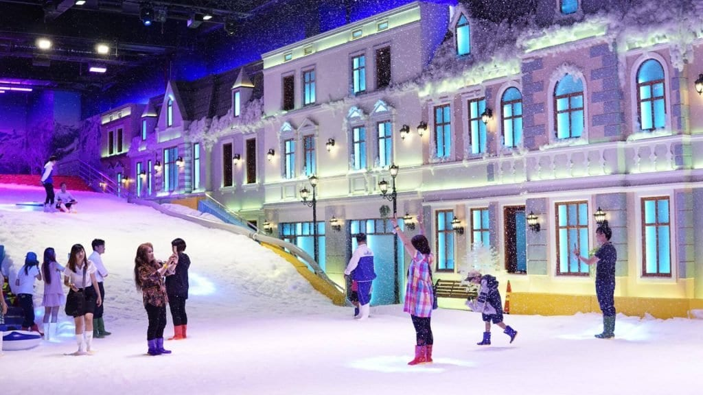 Fun in the Snow Saigon Snowland
