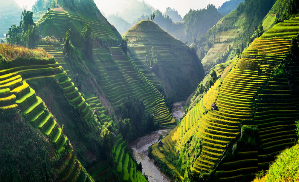 Vietnam must see Sun light on terraces rice fields. rice fields in Northwest of Vietnam.